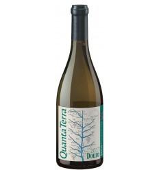 Quanta Terra Grande Reserva White Wine