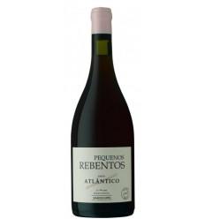Pequenos Rebentos Atlantico Red Wine