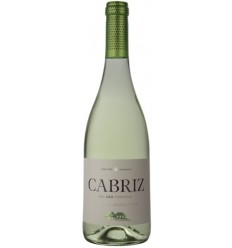 Cabriz White Wine Colheita Selecionada
